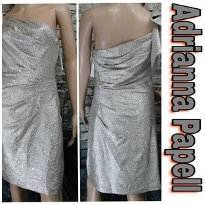 Adrianna Papell Silver Metallic Formal Gown